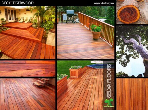 Deck Tigerwood